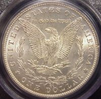 Nice Morgan dollar beginning to rainbow tone!